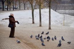 Winterliches Vilnius
